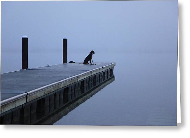 Swiss Photographs Greeting Cards - Faithful Greeting Card by Aaron Aldrich