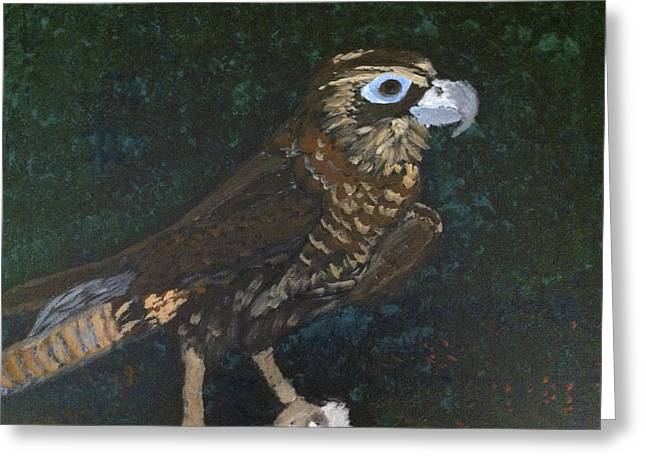 Rob Spencer Greeting Cards - Falconeering Greeting Card by Rob Spencer