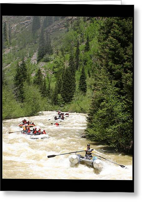 Throw Down Greeting Cards - White Water Rafting on the Animas Greeting Card by Jack Pumphrey