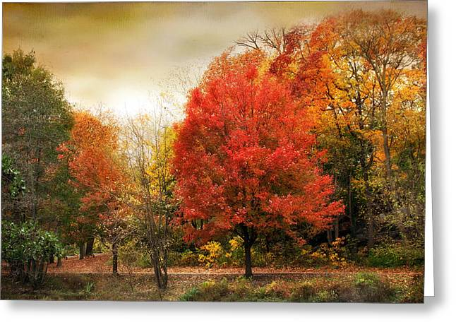 Fall Aflame Greeting Card by Jessica Jenney