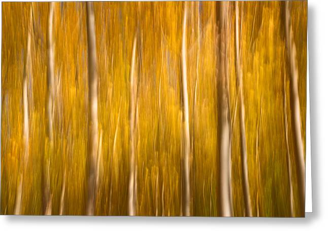 Horizontal Abstract Landscape Greeting Cards - Fall Alamo Greeting Card by Guido Montanes Castillo