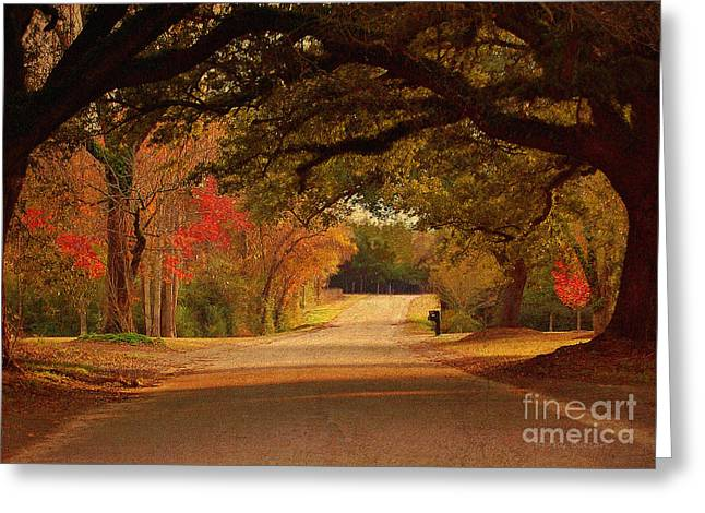 Fall Scenes Greeting Cards - Fall Along A Country Road Greeting Card by Kathy Baccari
