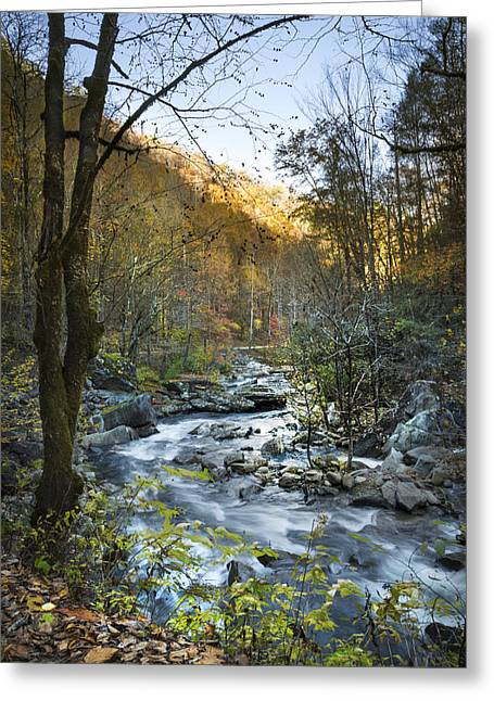 Reflections In River Greeting Cards - Fall along Citico Creek Greeting Card by Debra and Dave Vanderlaan