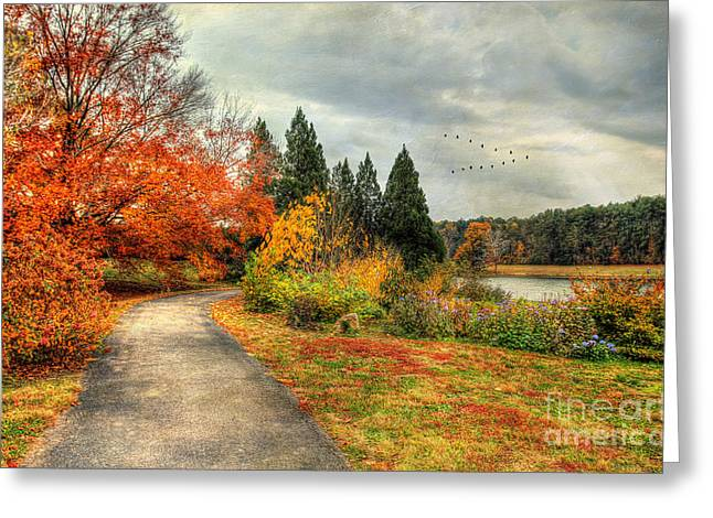 Autumn Scenes Greeting Cards - Fall Along Lake Nevin Greeting Card by Darren Fisher