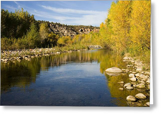 Photos Of Autumn Greeting Cards - Fall Along River Sierra Ancha Greeting Card by Tom Vezo