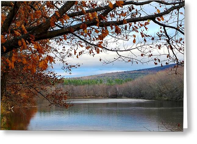 Androscoggin Greeting Cards - Fall Approaching Greeting Card by Mike Breau