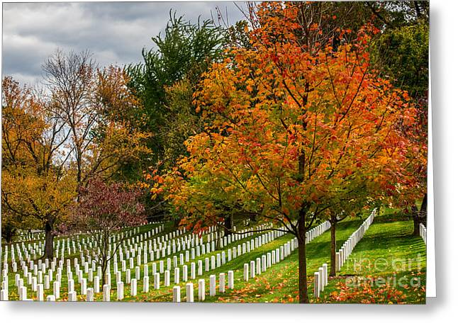 Final Resting Place Greeting Cards - Fall Arlington National Cemetery  Greeting Card by Gary Whitton
