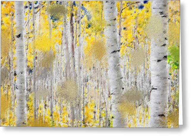 Fall Photos Mixed Media Greeting Cards - Fall Aspens Greeting Card by Renee Skiba