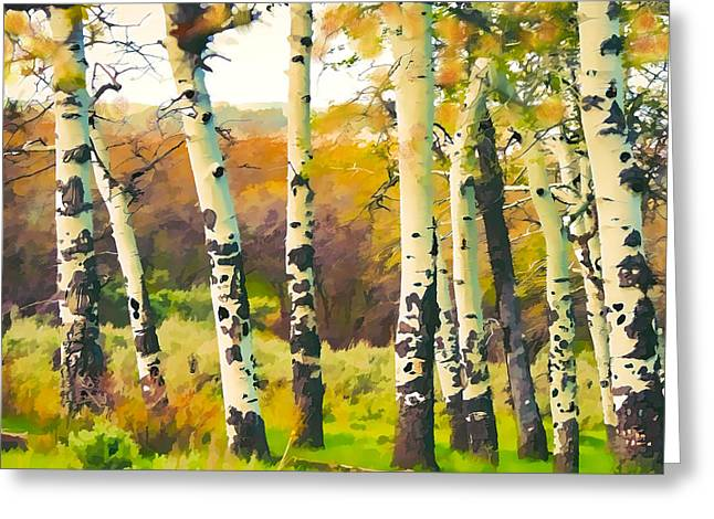 Fall Trees Greeting Cards - Fall Aspens Greeting Card by Susan Humphrey