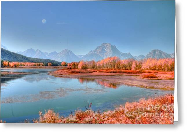 Kathleen Struckle Greeting Cards - Fall At OxBow Bend Greeting Card by Kathleen Struckle