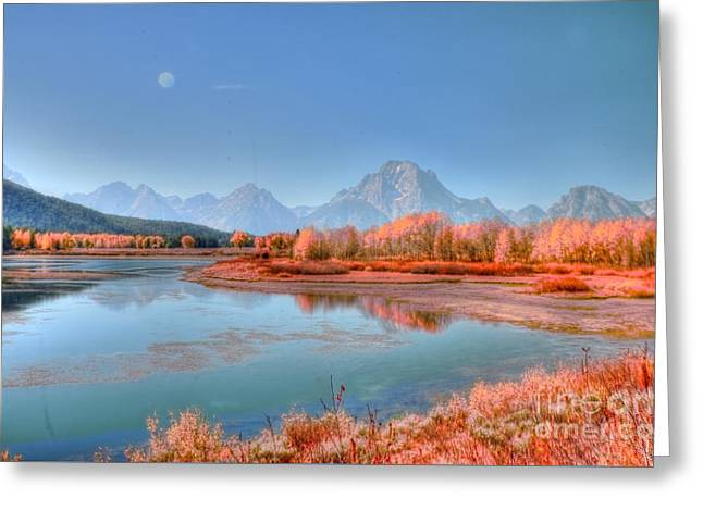Struckle Greeting Cards - Fall At OxBow Bend Greeting Card by Kathleen Struckle
