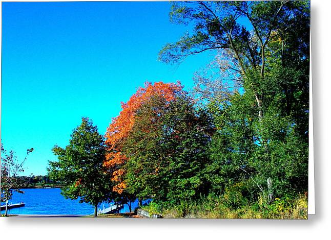 Darren Greeting Cards - Fall at the Docks Greeting Card by Darren Robinson