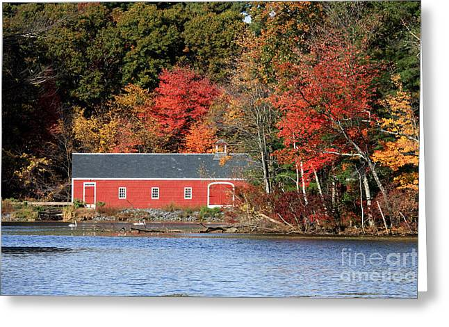 Sudbury Ma Photographs Greeting Cards - Fall at the Mill Greeting Card by Jayne Carney