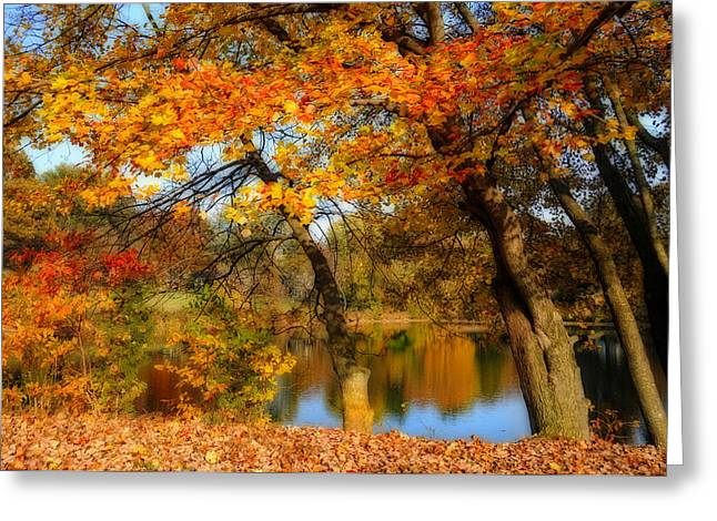 Reflection Harvest Greeting Cards - Fall at the Pond 2 Greeting Card by Lynn Bauer