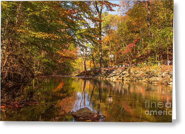Reflections Of Trees In River Photographs Greeting Cards - Fall at Valley Creek  Greeting Card by Rima Biswas