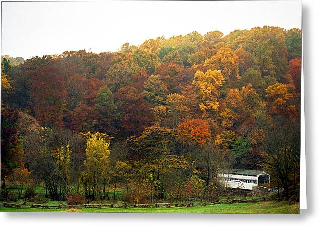 Pa Greeting Cards - Fall At Valley Forge Greeting Card by Skip Willits