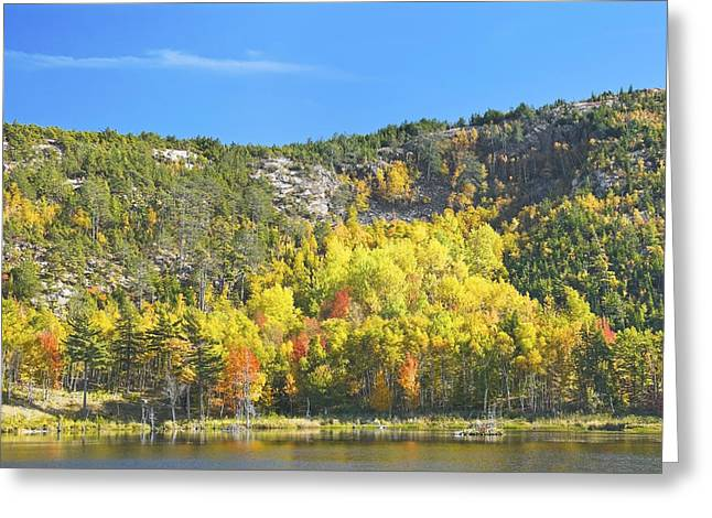 New England Wilderness Greeting Cards - Fall Beaver Dam Pond Acadia National Park Greeting Card by Keith Webber Jr