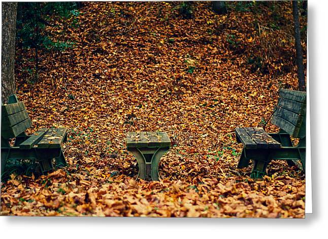 Feeling Young Greeting Cards - Fall Benches Greeting Card by Shelby  Young