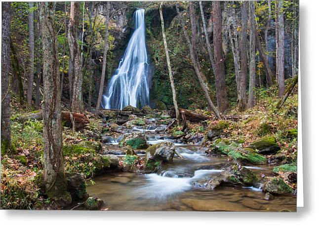 Stream Pyrography Greeting Cards - Fall Branch Falls Greeting Card by Michael Ray