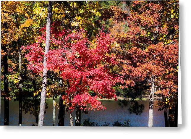 Autumn Photos Greeting Cards - Fall by the Lake Greeting Card by Parker Cunningham