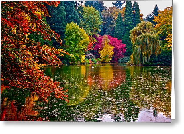 Fall By The Water Greeting Card by Rae Berge