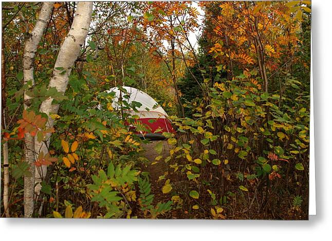 Peterson Nature Photography Greeting Cards - Fall Camping Greeting Card by James Peterson