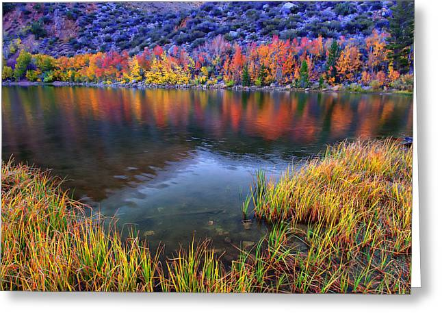 Fall Colors Greeting Cards - Fall Color at Dusk along North Lake Greeting Card by Scott McGuire