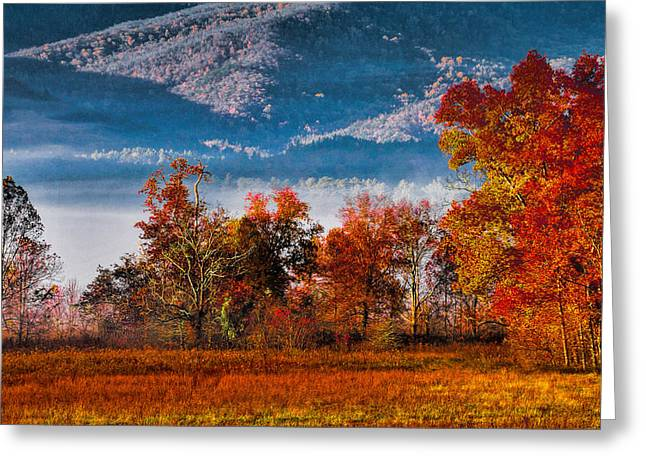 Fall Color Feast Greeting Card by Dave Bosse