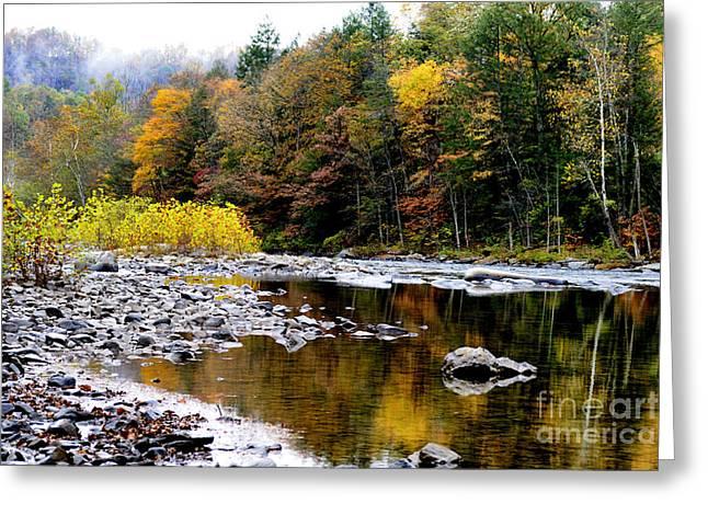Nicholas Greeting Cards - Fall Color Gauley River Greeting Card by Thomas R Fletcher