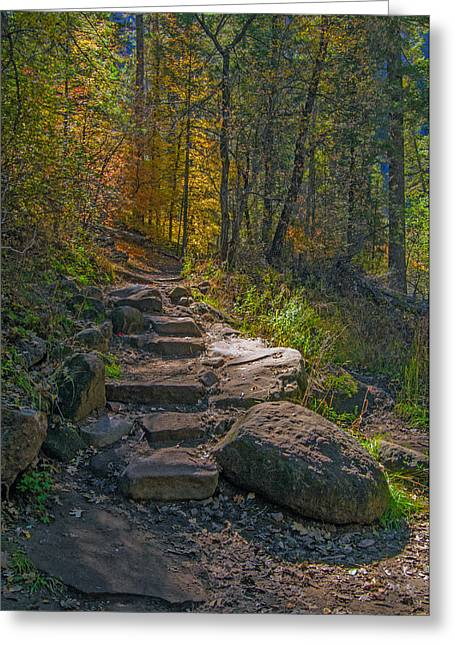 West Fork Greeting Cards - Fall Color Pathway Greeting Card by Tam Ryan