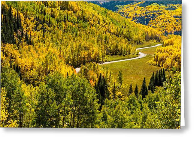 Mountain Road Greeting Cards - Fall Color Scenic Drive Greeting Card by Teri Virbickis