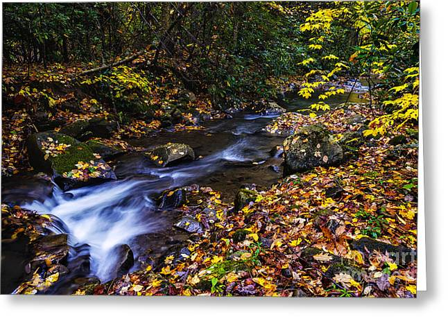 Late Fall Greeting Cards - Fall Color Straight Creek Greeting Card by Thomas R Fletcher