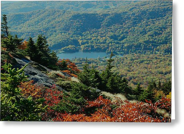 Paul Lyndon Phillips Greeting Cards - Fall Color Summit Grandfather Mountain NC - c1286a Greeting Card by Paul Lyndon Phillips