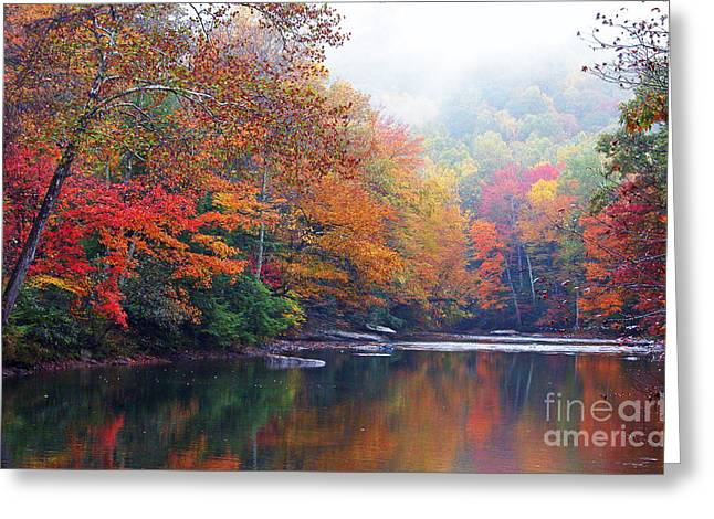 Fall Color Williams River Greeting Card by Thomas R Fletcher