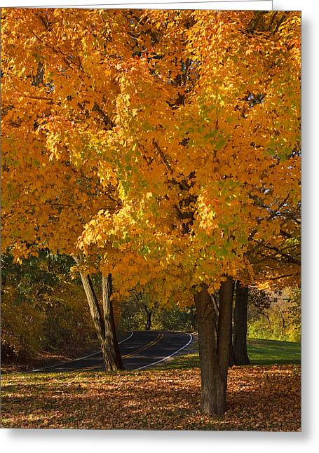 Highway Greeting Cards - Fall colors Greeting Card by Adam Romanowicz