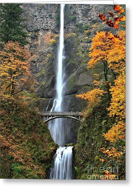 A River In Autumn Greeting Cards - Fall Colors At Multnomah Greeting Card by Adam Jewell