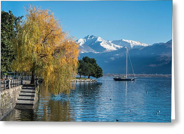 Ticino Canton Greeting Cards - Fall Colors in Locarno of Switzerland Greeting Card by Ayhan Altun
