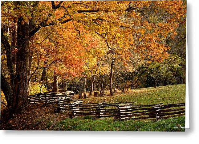 Split Rail Fence Greeting Cards - Fall Colors Greeting Card by John Pagliuca