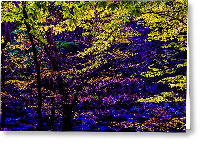 Autumn Greeting Cards - Fall Colors Greeting Card by Louis Dallara