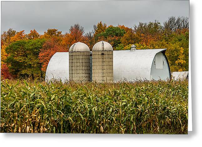 Harvest Time Photographs Greeting Cards - Fall Colors On A Farm Greeting Card by Paul Freidlund