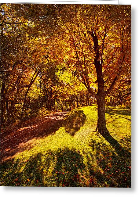 Path Greeting Cards - Fall Colors Greeting Card by Phil Koch