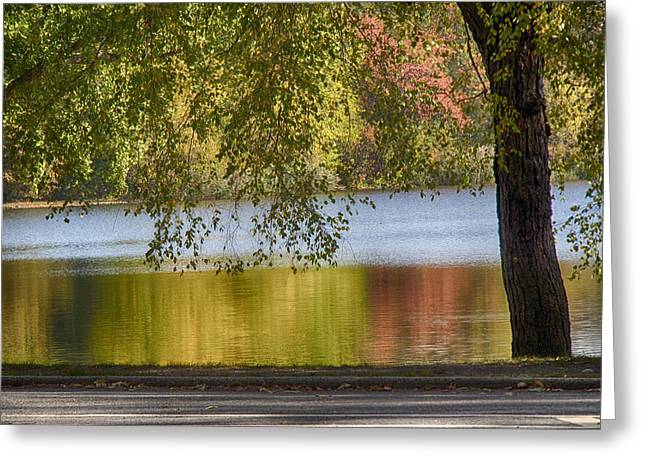 Prospects Greeting Cards - Fall Colors Reflected Greeting Card by Stanley Abraham
