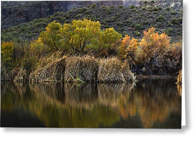 Willow Lake Greeting Cards - Fall Colors Reflections Greeting Card by Dave Dilli