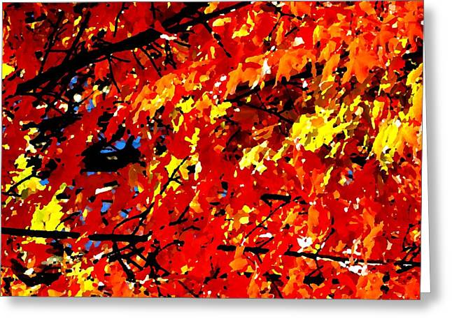Decor Photography Greeting Cards - Fall Colors Greeting Card by Toby McGuire