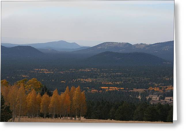 Snowbowl Greeting Cards - Fall Comes to the Valley Greeting Card by Grant Washburn