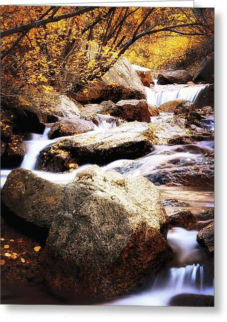 Fall Creek Greeting Cards - Fall Creek Canyon Greeting Card by The Forests Edge Photography - Diane Sandoval
