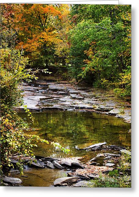 Recently Sold -  - Beautiful Creek Greeting Cards - Fall Creek Greeting Card by Christina Rollo