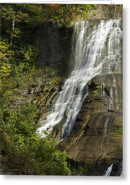 Ithaca Greeting Cards - Fall Creek Waterfall Greeting Card by Christina Rollo