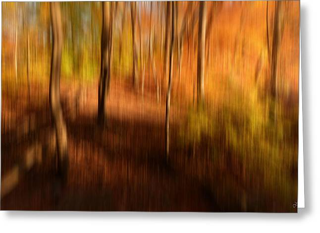 Fall Divine Greeting Card by Lourry Legarde