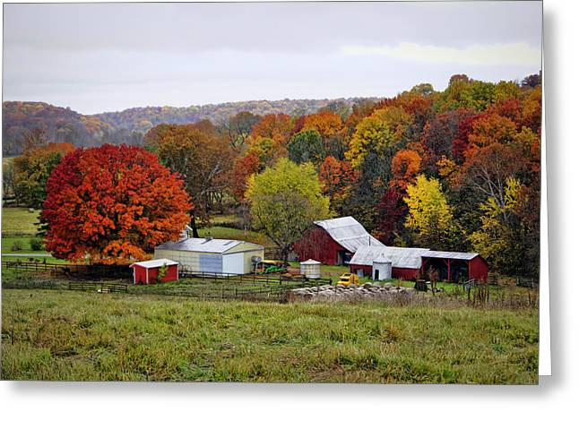 Hartsburg Greeting Cards - Fall Farmstead Greeting Card by Cricket Hackmann